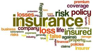 Disclosure recognised insurance amounts