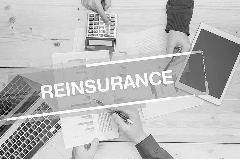 Insurance contract liabilities