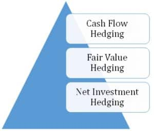 Net investment hedge
