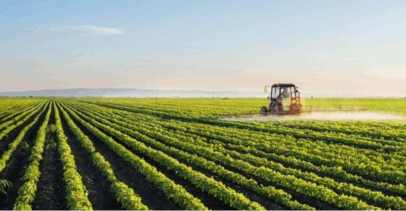 Crops crops Crops crops Crops crops Crops crops