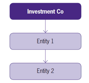 Accounting by investment entities