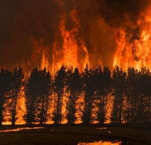 Bushfires Australia 1